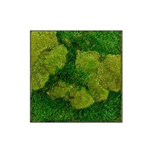 Moswand schilderij metaal stiel L vierkant antraciet mat 50A