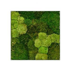 Moswand schilderij metaal stiel L vierkant antraciet mat 70B