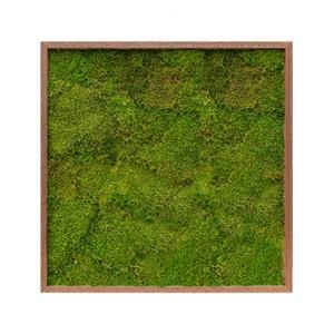 Moswand schilderij meranti hout vierkant 80 platmos