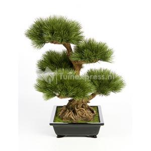 Kunstplant Pinus bonsai L