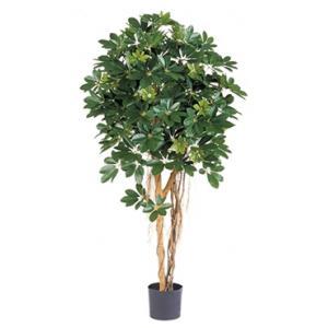 Dagaanbieding - Kunstplant Schefflera arboricola XL dagelijkse aanbiedingen