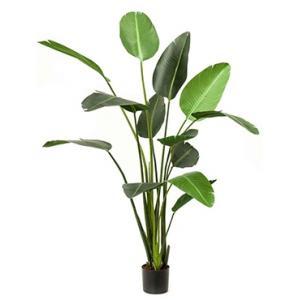 Kunstplant Strelitzia L