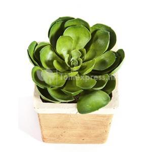Kunstplant Succulent M