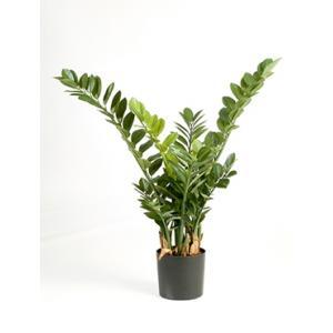 Kunstplant Zamioculcas Smaragd M