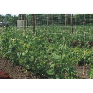 Klimnet voor planten
