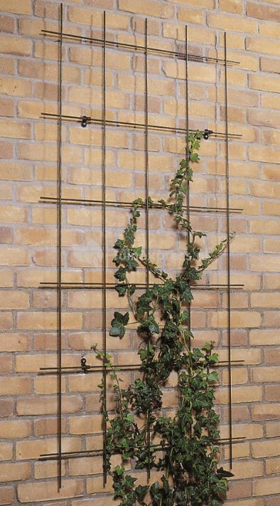 Klimrek Voor Planten.Nature Metalen Klimrek Rechthoekig Tuinexpress Nl