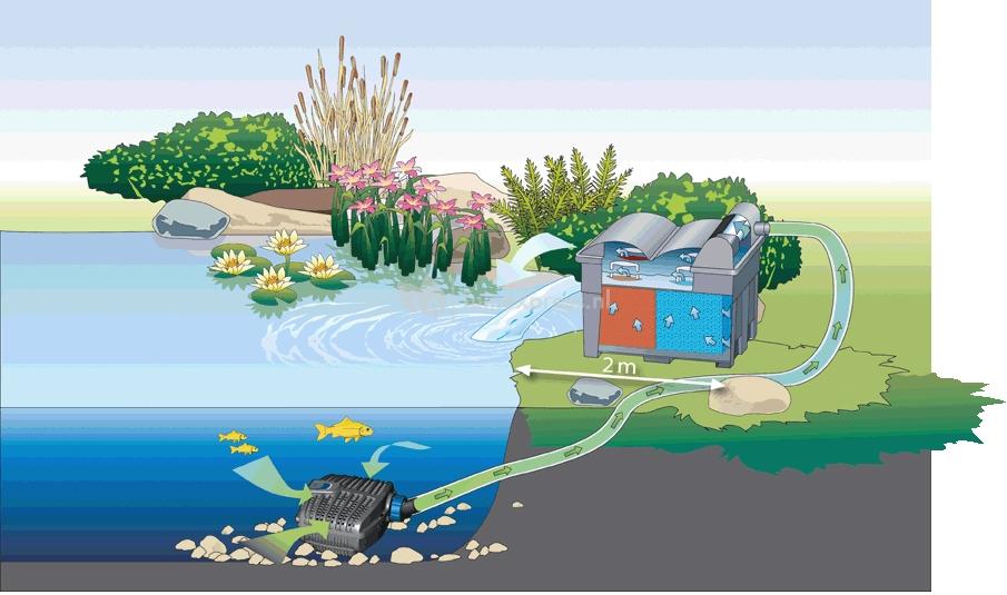 Oase aquamax eco classic vijverpomp for Filterpomp vijver