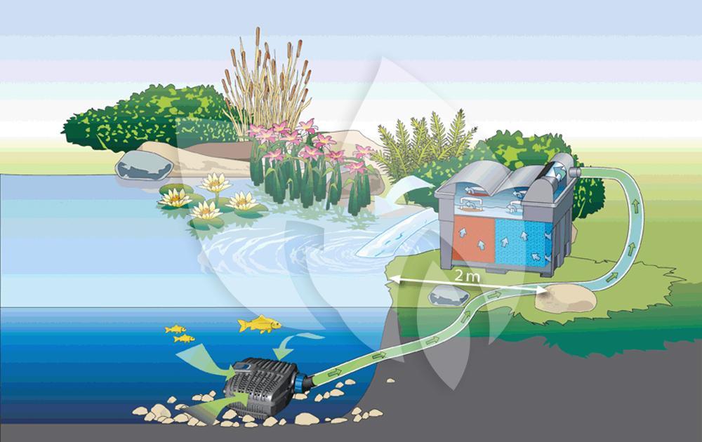 Oase aquamax eco classic 3500 vijverpomp for Vijverpomp voor grote vijver