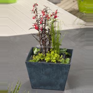 Mini vijver blauw met planteneiland