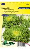 Andijvie (voorjaar) zaden - Nummer Vijf 2