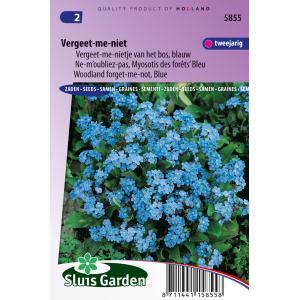 Korting Blauw vergeet me nietje van het bos bloemzaden – Vergeet me niet