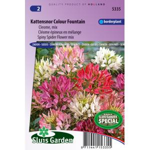 Cleome Mix bloemzaden - Kattensnor Colour Fountain