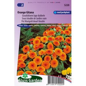 Korting Goudsbloem lage dubbele bloemzaden Orange Gitana