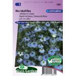 Juffertje in 't Groen bloemzaden – Miss Jekyll Blue