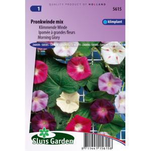 Klimmende Winde bloemzaden - Pronkwinde Mix