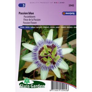 Korting Passiebloem bloemzaden – Passion Blue