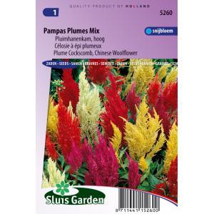 Pluimhanenkam hoog bloemzaden - Pampas Plumes Mix