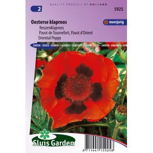 Reuzenklaproos bloemzaden – Oosterse klaproos