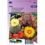 Soortenrijk Cactus mengsel bloemzaden - Cactus