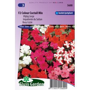 Korting Vlijtig Liesje bloemzaden F2 Colour Coctail Mix