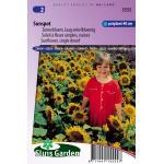 Zonnebloem laag enkelbloemig bloemzaden - Sunspot