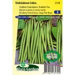 Stokslaboon (dubbele tros) zaden - Cobra
