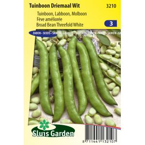 Tuinboon zaden - Driemaal Wit