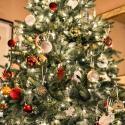 De juiste verzorging van de kerstboom