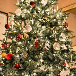 Verzorging Kerstboom.De Juiste Verzorging Van De Kerstboom
