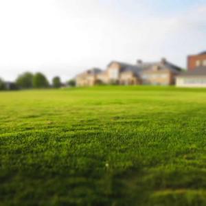 Een mooie, groene en sterke grasmat