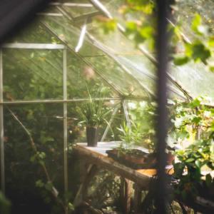 Voordelen van een tuinkas